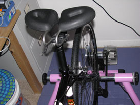 Sue's bicycle Spiderflex - Comfortable Bicycle Saddle installed