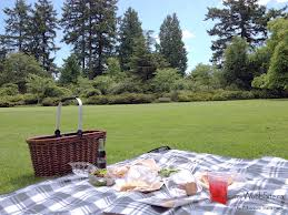 Romantic Picnic after Cycling